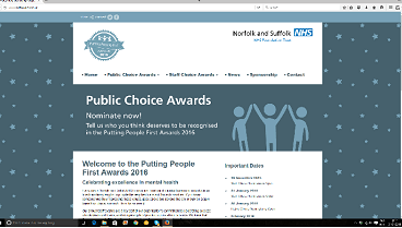 small screen shot of nsftawards site